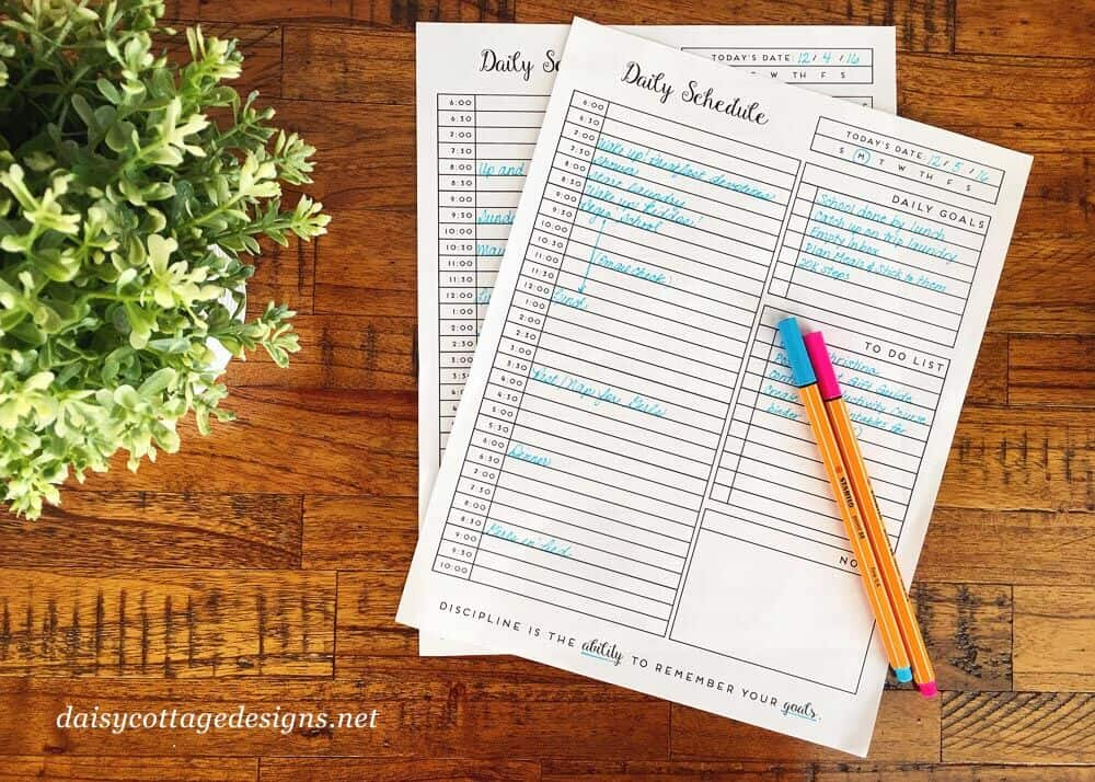 Free Printable Daily Planner for getting on track in 2017. Use this printable schedule to stay motivated and keep your resolutions in the new year.
