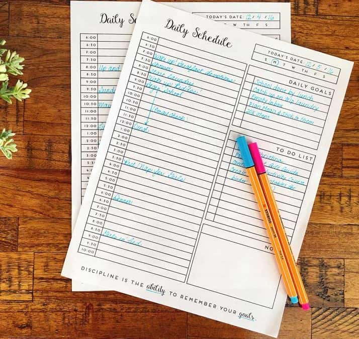 Printable Daily Planner for the New Year